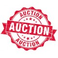Auction Items coming Soon